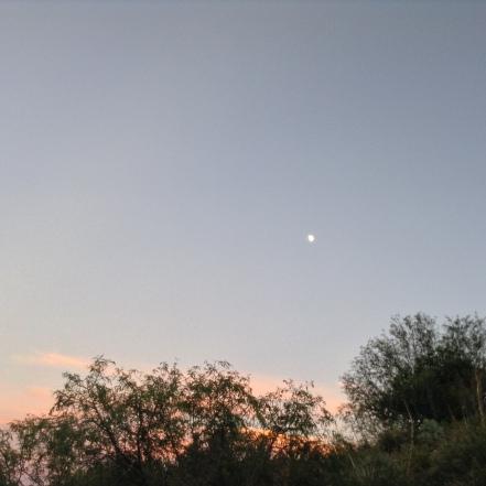 Clarkdale, AZ