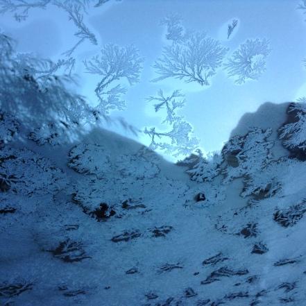 winter writing challenge