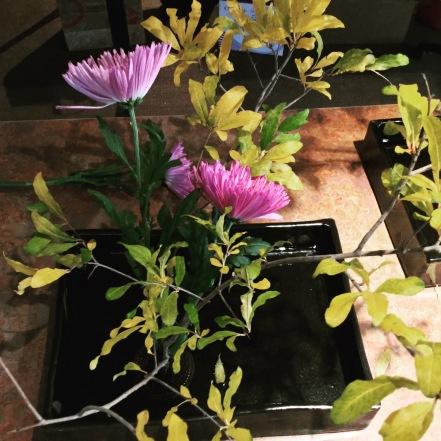 flower show in progress