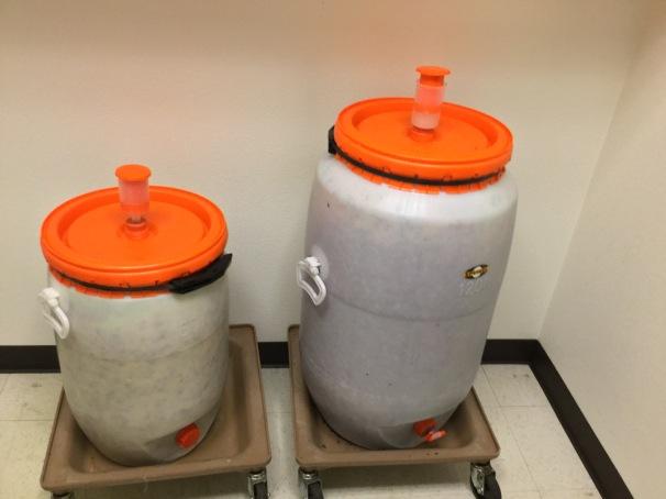 fermenting artisanal kraut