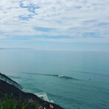 Yogananda's surfers