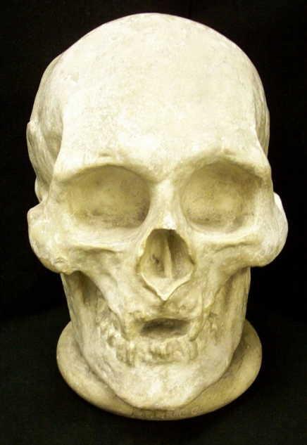 his skull
