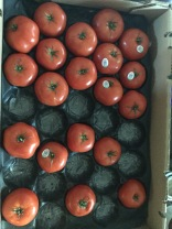 ripe tomatoes, ready to juice