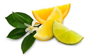 rooibos lemon cloud